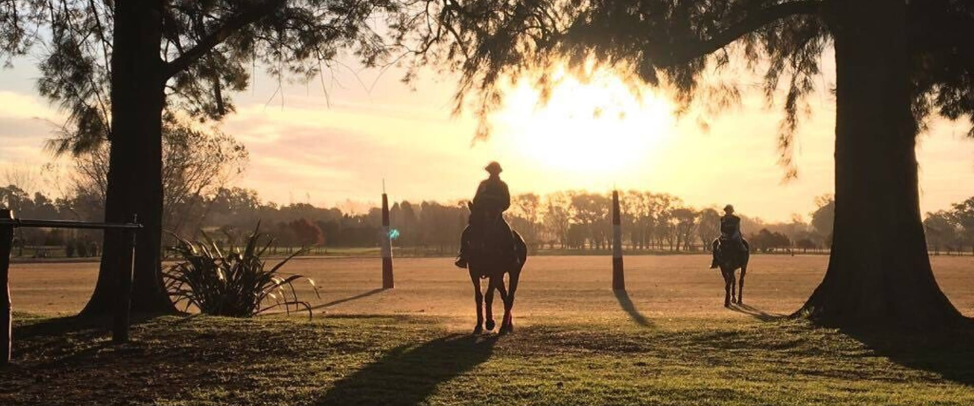 Be a Polo Player for A Day